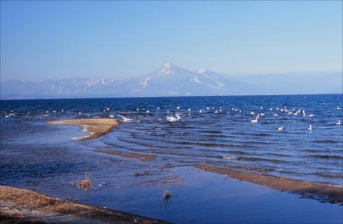 「群青の浜」郡山のまつりと観光写真コンテスト第22回入賞作品