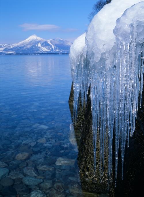 「穏やかな冬日」郡山のまつりと観光写真コンテスト第26回入賞作品