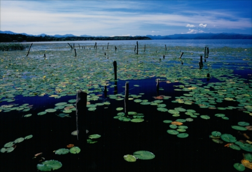 The Prize winner of 3rd Photo Contest of Lake Inawashiro and Urabandai Lakes and Marshes Kohan no jokei
