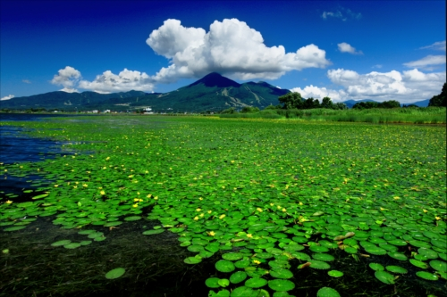The Prize winner of 10th Photo Contest of Lake Inawashiro and Urabandai Lakes and Marshes Mizube no harmony