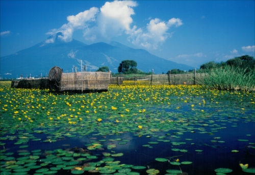 The Prize winner of 1st Photo Contest of Lake Inawashiro and Urabandai Lakes and Marshes ryofu no nakani saku